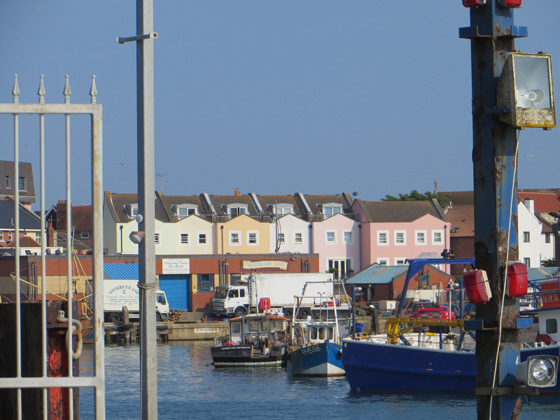 portsmouth eight