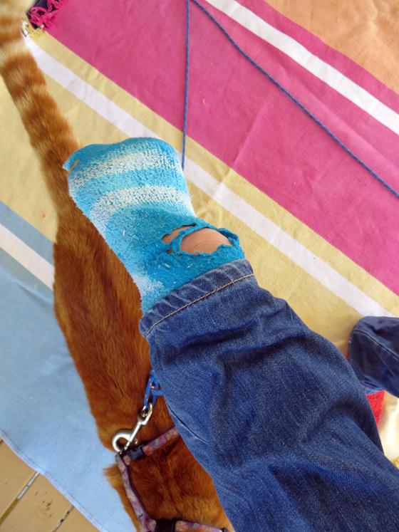 holey socks